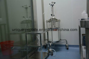 Health Care Dsip (Delta Sleep-inducing Peptide) with High Quality pictures & photos