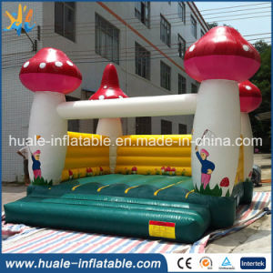Inflatable Jumping Castle, Playing Castle Inflatable Bouncer, Inflatable Combo Inflatable for Sale