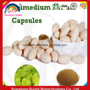 Gmmp Factorysupply Best Quality Epimedium Extract Capsules pictures & photos