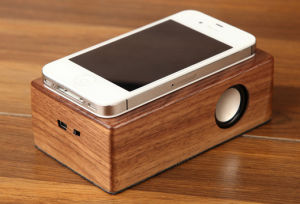 Wireless Wooden Case Induction Speaker pictures & photos