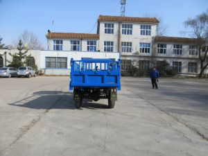 Diesel Chinese Three Wheel Vehicle with Rops & Sunshade pictures & photos