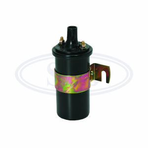 Bosch Type 0221119027 Ignition Coils for Bosch Electric System pictures & photos