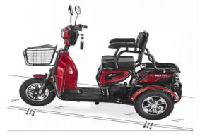 48V350W Newly Design Drum Brake Electric Trike Ce pictures & photos
