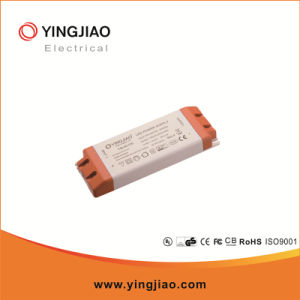 40W 12V/24V Constant Voltage LED Power Driver pictures & photos