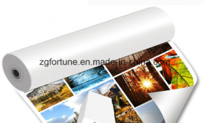 180g 220g 260g Cheap Photo Paper Eco Solvent Photo Paper pictures & photos