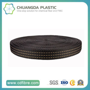 Woven 100% PP Woven Webbing for Bag and Luggage pictures & photos