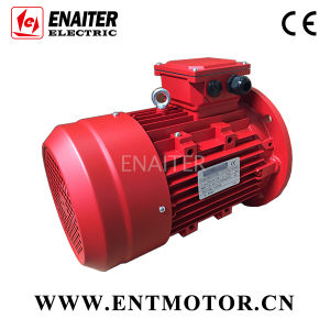 Customized Electrical Three Phase AC Motor pictures & photos