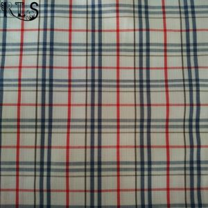 100% Cotton Poplin Woven Yarn Dyed Fabric for Shirts/Dress Rls40-42po