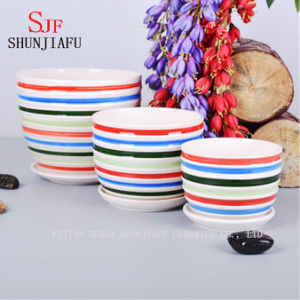 Simple Flowerpot/ Black and White Stripes and Color Lines pictures & photos
