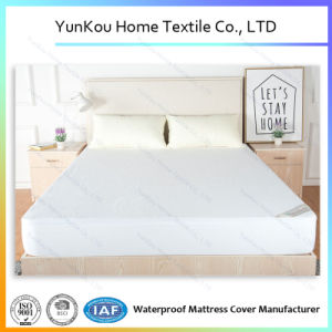 Cotton Terry Waterproof Mattress Cover pictures & photos