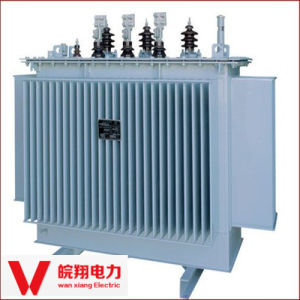Oil-Immersed Transformer/out Door High Voltage Transformer pictures & photos