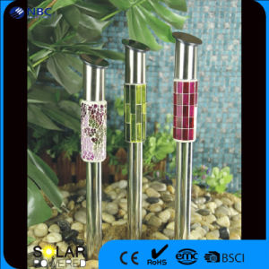 Nbc-9109 with Light Source and Warm White Solar Panel Gardening Stake Light pictures & photos