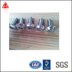 Stainless Steel Security Bolts M6*12mm pictures & photos