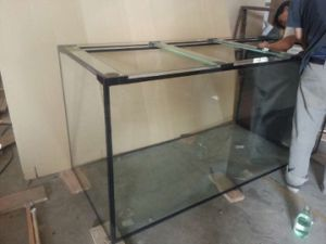 High Quality Large Size Glass Fish Aquarium Tank pictures & photos