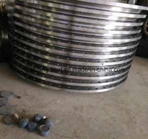 Stainless Steel Forged Blind Flange pictures & photos