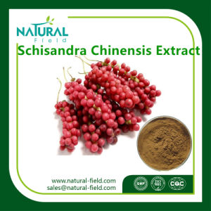 Schisandra Chinensis Extract Powder Plant Extract pictures & photos