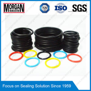 ISO/DIN/JIS/As568/GB NBR/HNBR/FKM/EPDM/Silicone Rubber O Ring pictures & photos