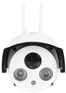 Outdoor IP Camera with Alarm Function pictures & photos