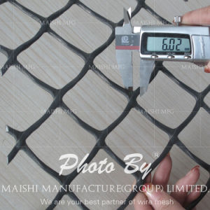 PP PE Extruded Square Net pictures & photos