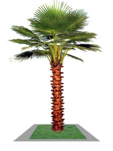 Artificial Palm Tree with Factory Price pictures & photos