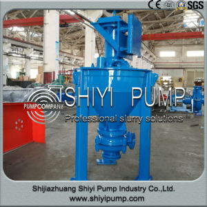 Centrifugal Vertical Mineral Sand Handling Froth Pump pictures & photos