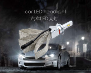 Hot Sale Fanless with Wholesale Pice Philips LED Car Headlight pictures & photos
