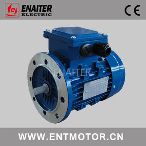 Electrical Motor with B5 Mounting pictures & photos
