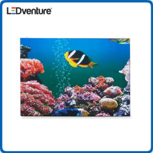 pH2.0 Indoor HD Resolution LED Display Wall pictures & photos