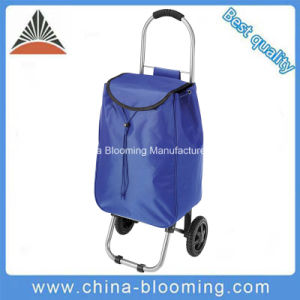 Foldable Supermarket Pull Roiling Trolley Wheel Shopping Cart Bag pictures & photos