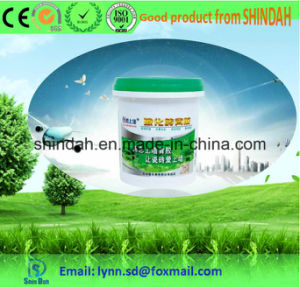 Ceramic Tile Adhesive Vitrified Tile Adhesive Without Drying pictures & photos