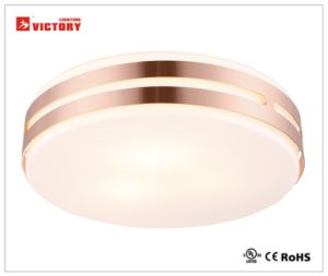Waterproof Modern Simple Round Home Modern LED Ceiling Light with Opal Glass pictures & photos