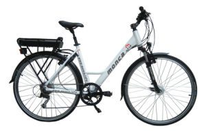 2017 Sine Wave Super Low Noise Ce En15194 Certified Electric Bike City Ebicycle Warranty 2 Years M713 pictures & photos