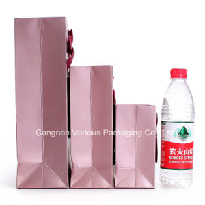 OEM Foldable Paper Gift Bag pictures & photos