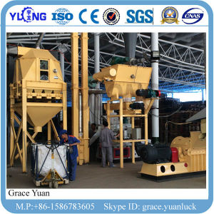 Hot Selling Rice Husk Pellet Machine for Vertical Ring Die pictures & photos