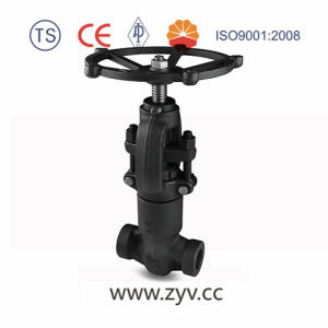 API Forging Steel Weld Globe Valve pictures & photos