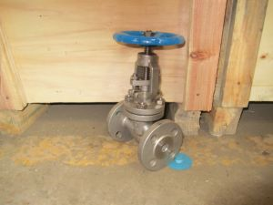 Class150 Double Flange Stainless Steel Globe Valve Outside Screwed & Yoke pictures & photos