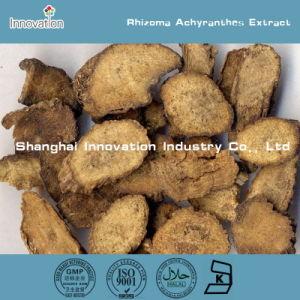 Rhizoma Achyranthes Extract / Achyranthes Bidentata Extract