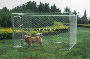 Chain Link Dog Pen System Dog Kennel 10′ X 10′ X 6′ Box Kennel pictures & photos