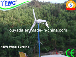 500W/600W/1kw Wind Turbine Project Cases pictures & photos
