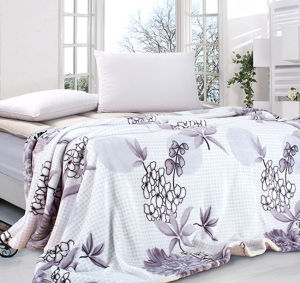 Plain Coloured Printed Blanket Quilt pictures & photos
