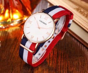 Fabric Nylon Wristwatch Gold Case Stainless Steel IP Plated Buckle pictures & photos