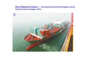Professional Consolidate Shipping Service China to Brazil Shipping Santos Paranagua Montevideo Rio Grande Itapoa Rio De Janeiro pictures & photos