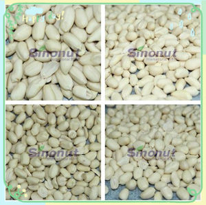 Blanched Peanuts of Split Kernel 20% pictures & photos