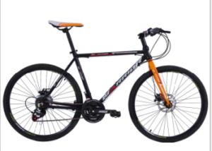 26inch 21 Speed Steel MTB Bicycle for Sale pictures & photos