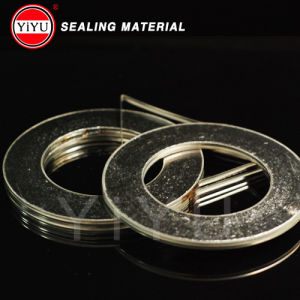 Basic Type a Graphite Spiral Wound Gasket pictures & photos