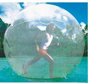 Water Park Equipment 2017 Hot Design Walking Ball (JS5035) pictures & photos