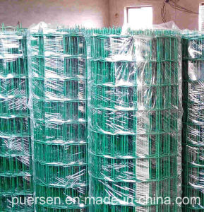 "Hot Sale 1/2"" Square PVC Coated Welded Wire Mesh pictures & photos"