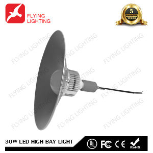 30W LED Industrial Light