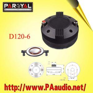 Driver Speaker D120-6
