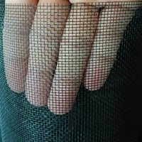 Insect Screen Mesh Mosquito Net pictures & photos